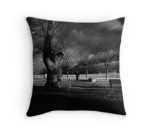 cold weather Throw Pillow