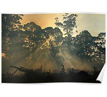 Montagu bushfire , far nor west Tasmania , Australia Poster