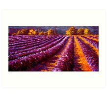 Provençal Home in the Lavender Art Print