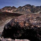 Large Boulder In Artist's Palette, Death Valley CA by Tom Fant