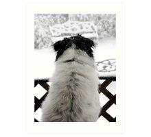 Dottie, Snow Watcher Art Print