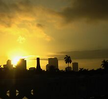 Evening Folds Over Miami by BlackSwan