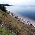 Pebble Beach,Ontario by Jann Ashworth