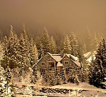 Whistler winter wonderland by adouglas