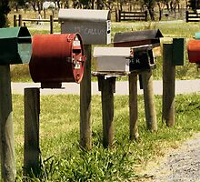letterboxes by Deb Gibbons