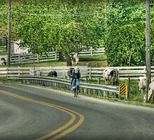 Bicycle Ride in Amish Country by Dyle Warren