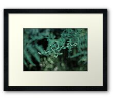 Your Delicate Touch Framed Print