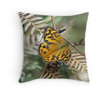 Heteronympha Merope (Common Brown Butterfly) Throw Pillow
