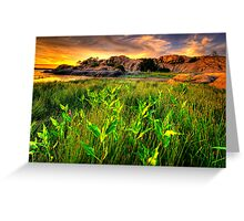 Summer Willow Lake Sunset 1 Greeting Card