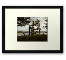 "Achray Pines  (2009)   - 30""x24"" max print size Framed Print"