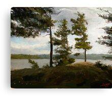 "Achray Pines  (2009)   - 30""x24"" max print size Canvas Print"