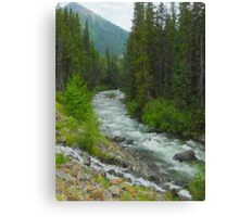 """Fraser River Tributary  (2009)  - 18""""x24"""" max print size Canvas Print"""