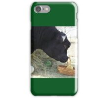 First Annual Easter Melon Hunt iPhone Case/Skin