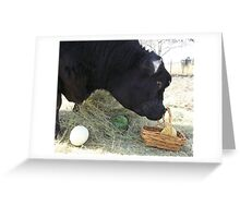 First Annual Easter Melon Hunt Greeting Card