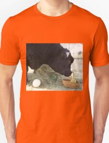 First Annual Easter Melon Hunt T-Shirt