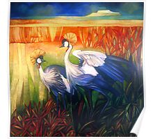 "crane ""balearica pavonina"" Poster"