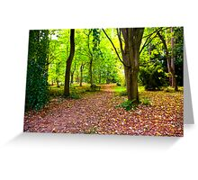 In The Woods Greeting Card