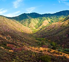 California Hills by Nickolay Stanev