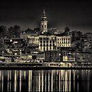 Lights of Belgrade by Milos Markovic