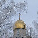 Winter spirit by Elena Skvortsova