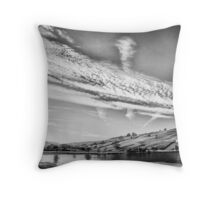 High cold winds of winter Throw Pillow