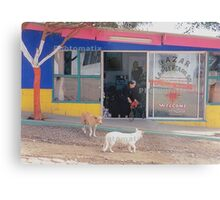 Mexico Dogs HDR  Metal Print