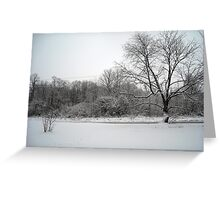 Snowy Front Yard Greeting Card