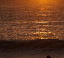 Surfing Sundowner Sticker