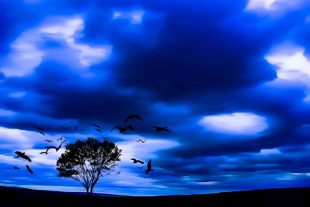 Blue Fantasy by Svetlana Sewell