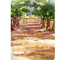 A Road to village Photographic Print