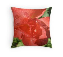Harry Winston Red Throw Pillow