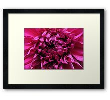 Dahlia Heart Framed Print