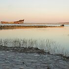 The Wreck at Gillingham Riverside by tjb500