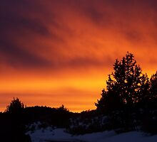 Juniper Fire Sunset by © Betty E Duncan ~ Blue Mountain Blessings Photography