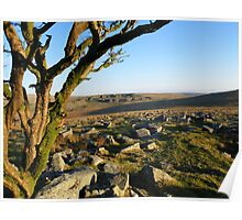 Dartmoor: Looking Towards Foggintor Quarries Poster