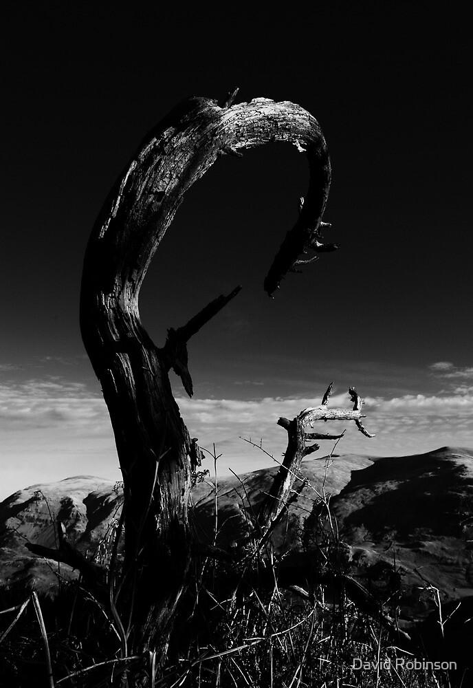 Raven Crag by David Robinson