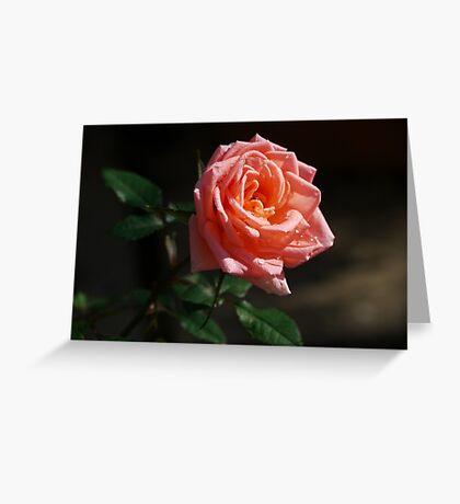 Rose Dew Greeting Card