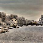 Ice bridge by Fadi  Barake
