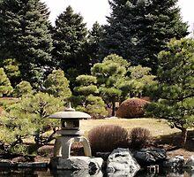 Japanese Garden by Cori Redford