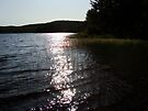 Lake Manganese Dusk by Karen Karl
