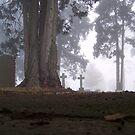 Graveyard by Luke Stevens