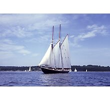 Bluenose 2 -Halifax Harbour Photographic Print