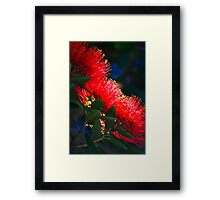 Kiwi Christmas Framed Print