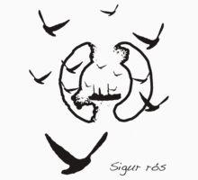Sigur Ros Albums v2 by boockly22