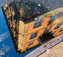I See The World Through Puddles by rorycobbe