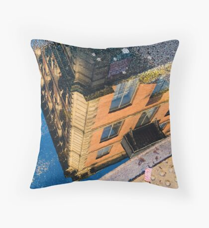 I See The World Through Puddles Throw Pillow