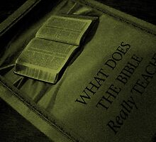 What the bible really teaches! by sendao
