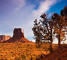 Junipers and West Mitten Butte by Nickolay Stanev