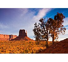 Junipers and West Mitten Butte Photographic Print