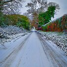 Straight Ahead by Mark Snelling